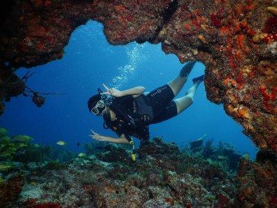 Lección de buceo para principiantes Cancún 6 hrs
