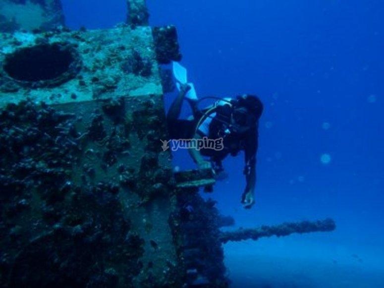 Nadando por arrecifes en Quintana Roo