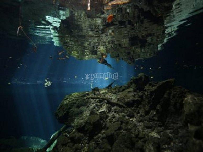 Cenote Tajma Ha bucenado