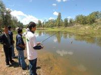 Pescando con caña
