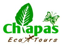 Eco Tours Chiapas Vuelo en Avioneta