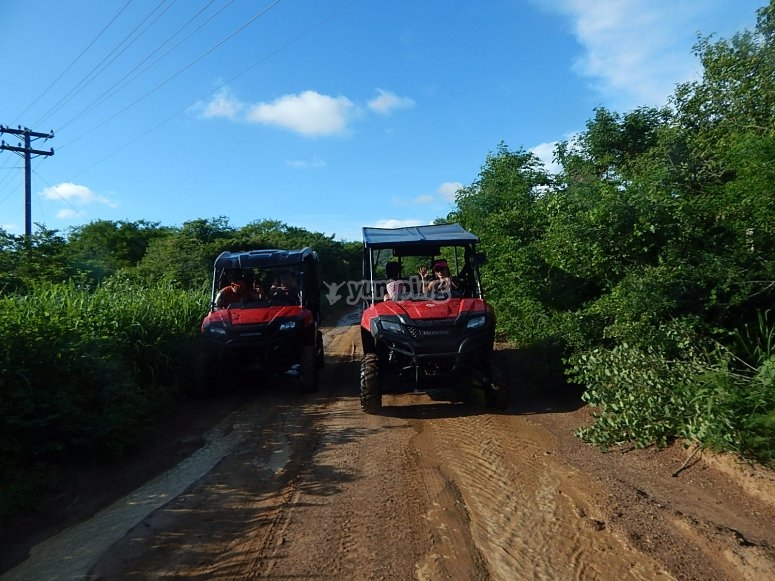 recorriendo en buggies