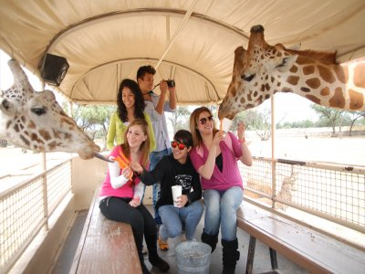 CDMX animal park tour plus 8h meal