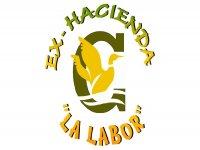 Ex Hacienda La Labor Canopy