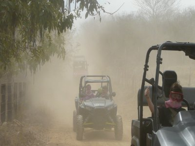 Buggy tour for 4 per play 2:30 Hrs