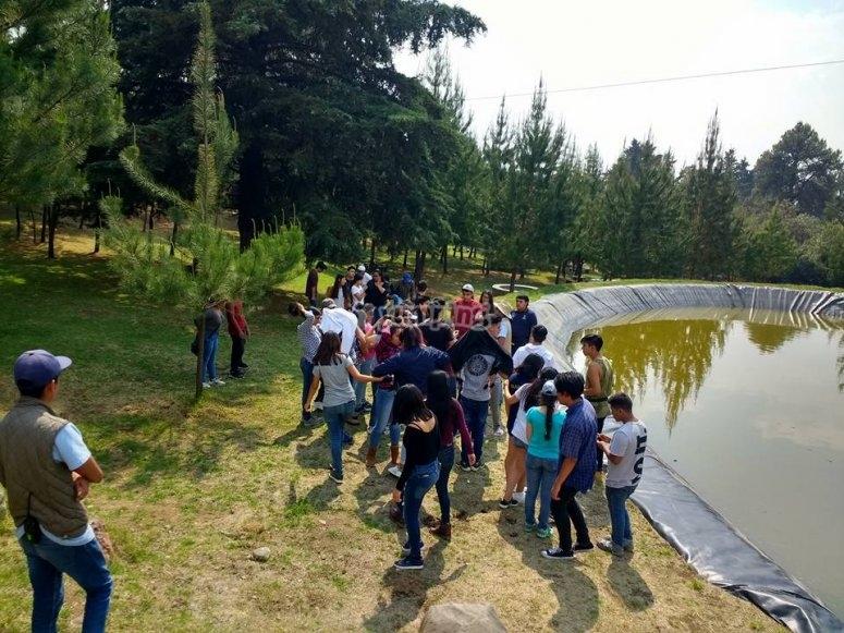 Activity near the lake