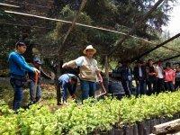 Adventure and Environmental Education Amecameca 11 hours