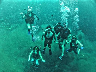 Snorkeling in Media Luna Lagoon for groups