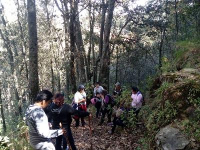 Senderismo Monte Descubridora 2Hrs