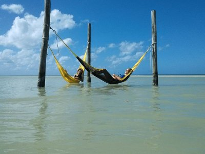 Private tour with boat ride 10h Holbox, Cancún