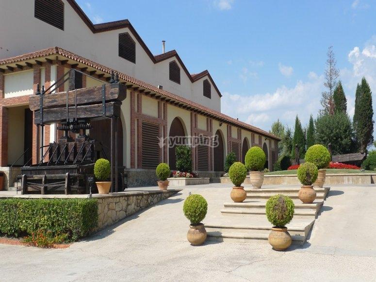 Installations viticoles