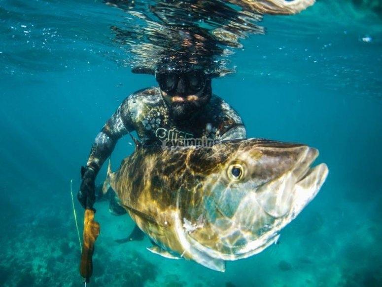 Pesca y snorkel
