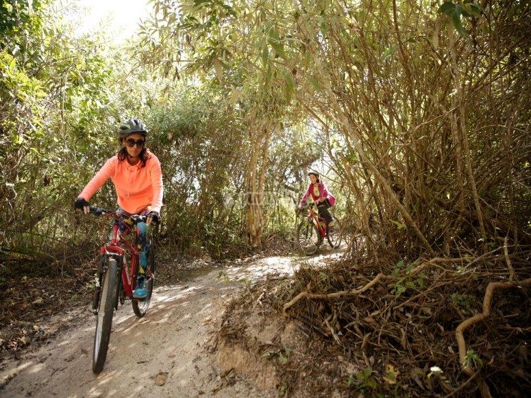 actividades en bicis