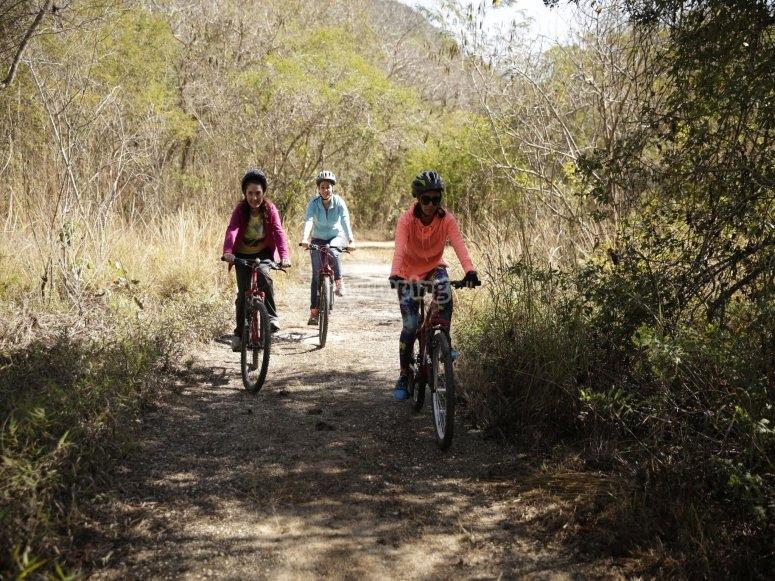 ciclismo en equipo