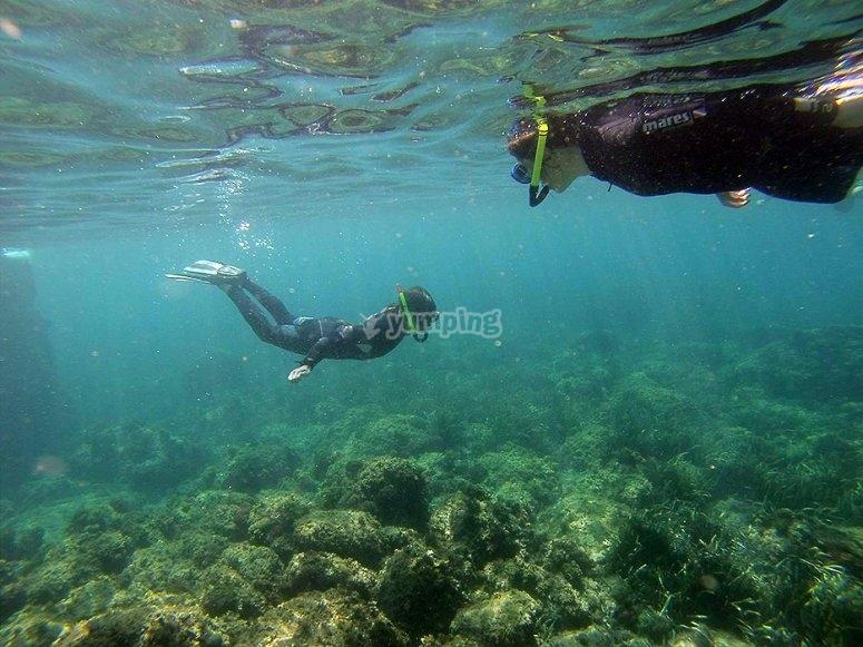Snorkel en Bacalar