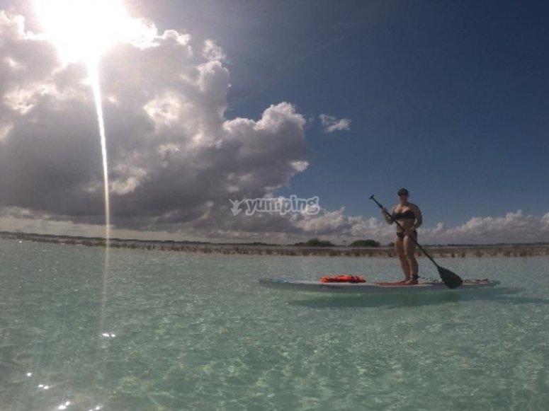 Practice paddle