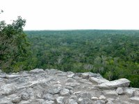 Vistas desde la pirámide de Cobá