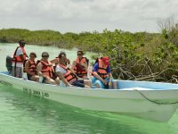 Paseo en lancha por los manglares