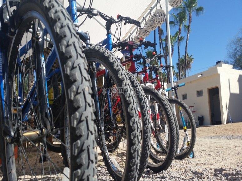 Mountain Bikes,
