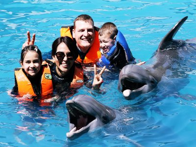 Swimming dolphins students and teachers Jalisco