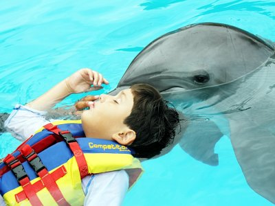 Dolphin therapy Guadalajara 15 min
