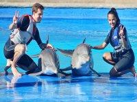 Swimming with dolphins birthday Guadalajara 40min