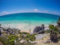 Snorkel en Grand Cenote y Tulum con transporte