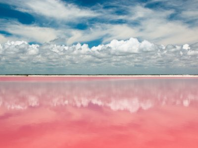 Guided visit to Las Coloradas with food