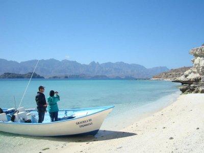 Desert & Sea Expeditions