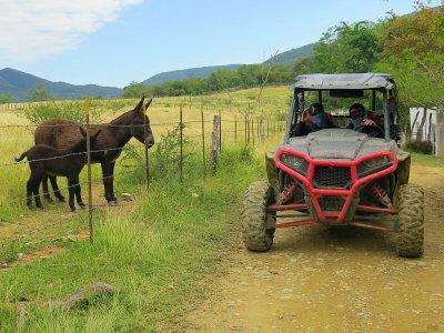 Buggy Route for 2 PAX in Presa de Jalpan