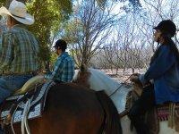Horseback riding in Jalpa