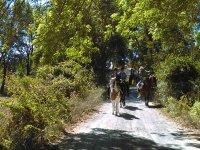 Enjoy nature with this horseback ride