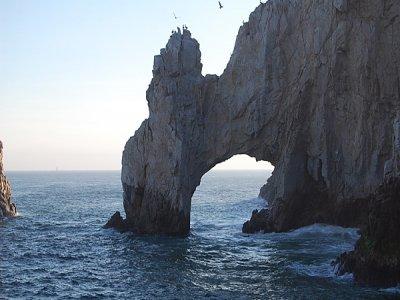 Cabo Eco Tours Snorkel