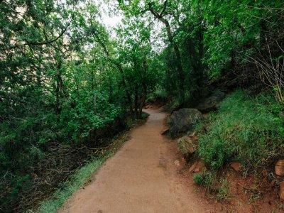 Ecoturistico Jomxuk Caminata