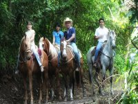 Horse riding with guide