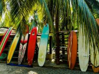 Surf classes at Playa la Saladita