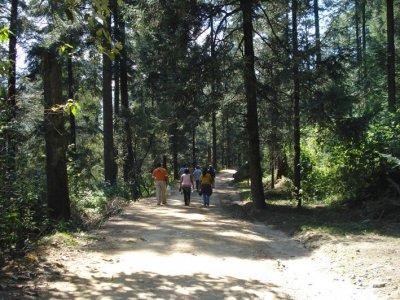 Atlitic Caminata