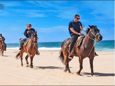 Paseo a Caballo en la playa Los Cabos