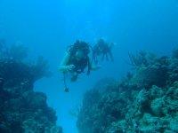 Buceo en arrecofes de coral