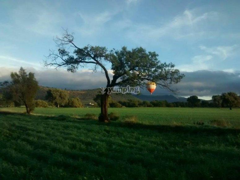 Balloon in Tlaxcala
