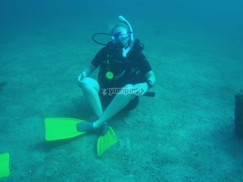 Enjoying the diving immersion