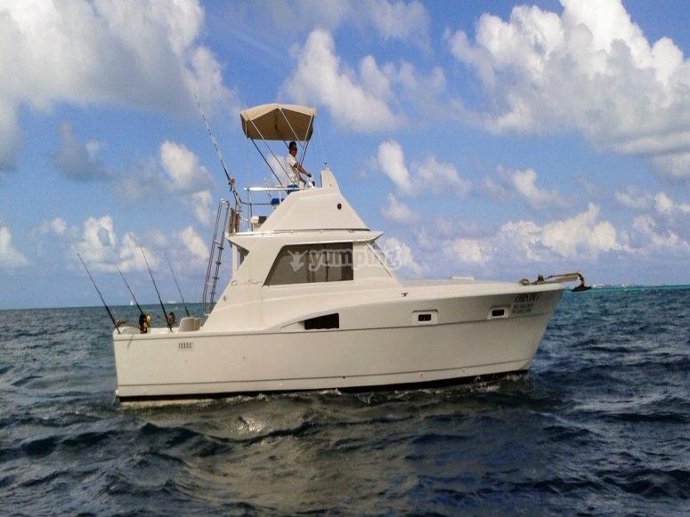 Barco de 37 ft