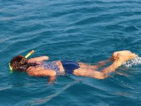 Contemplando a los tiburones ballena en  Bahía de la Paz