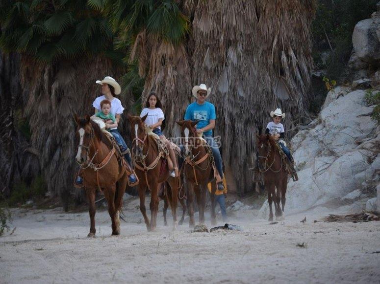Cabalgata en los Cabos