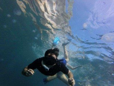 Snorkel en Pueto Vallarta Jalisco