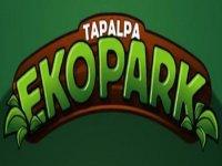 Tapalpa Ekopark Escalada
