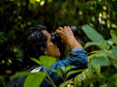 Guided tour through the jungle of Los Tuxtlas