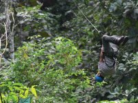 Dare to feel the adrenaline on the zip line