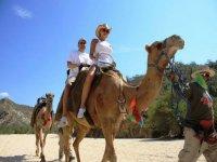 camel routes