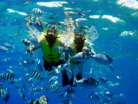 Snorkeling tour in Huatulco for 4 hours